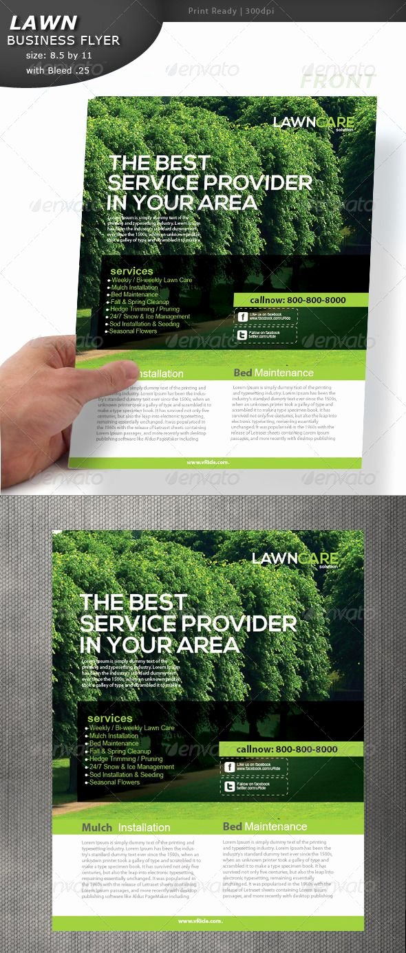 Lawn Care Flyer Ideas Elegant Lawn Care Flyer