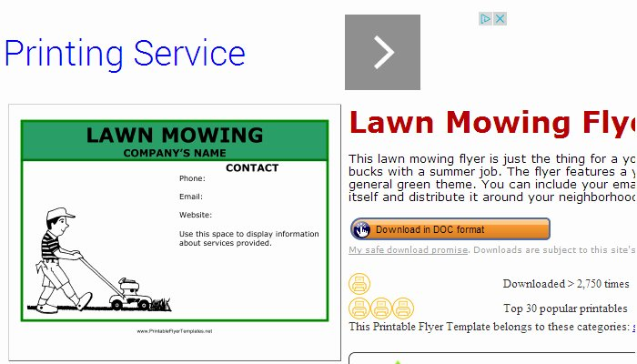 Lawn Care Flyer Template Free Awesome 5 Lawn Mowing Flyer Templates