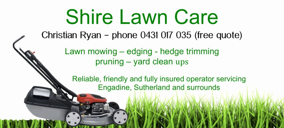 Lawn Mower Flyer Template Elegant Lawn Care Flyer