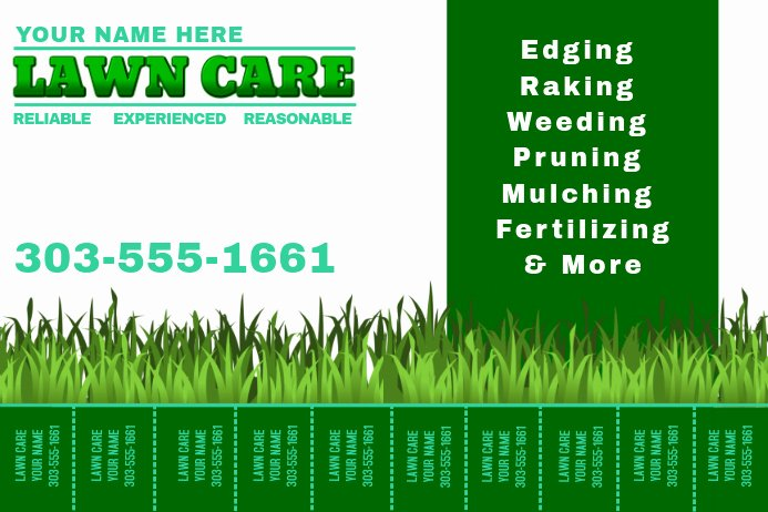 Lawn Mowing Flyer Templates Elegant Lawn Care Template