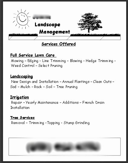 Lawn Service Flyer Ideas Lovely Review My Lawn Care Flyer and Marketing Strategy
