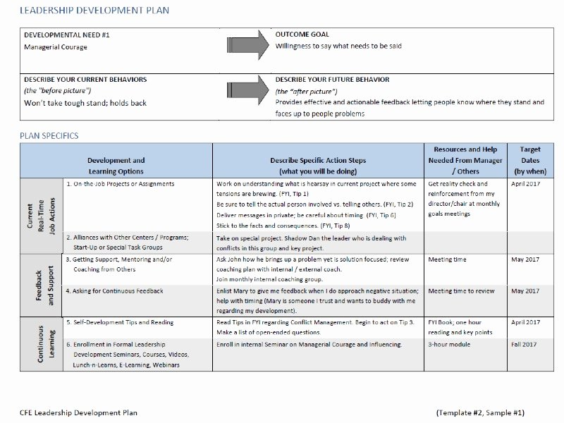 Leadership Action Plan Example Awesome Online Leadership Personal Development Plan Template