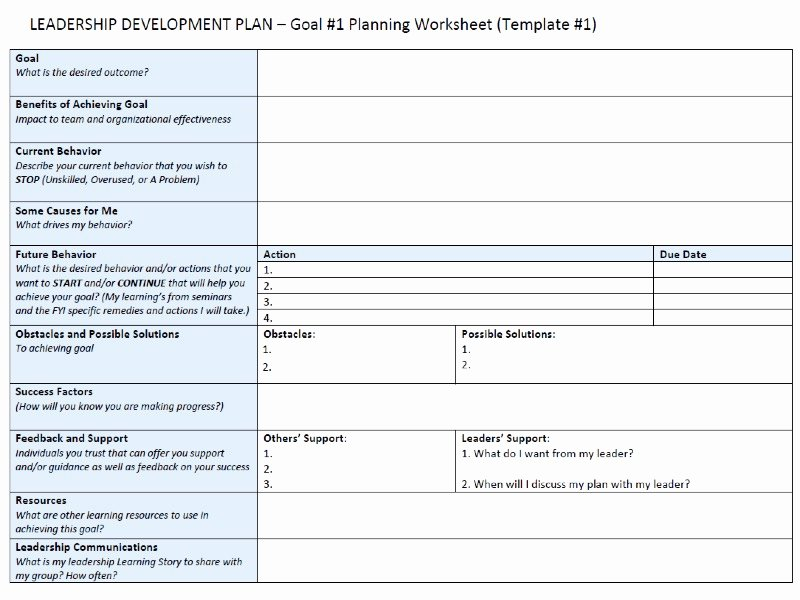 Leadership Action Plan Example Best Of Leadership Development Action Plan Template