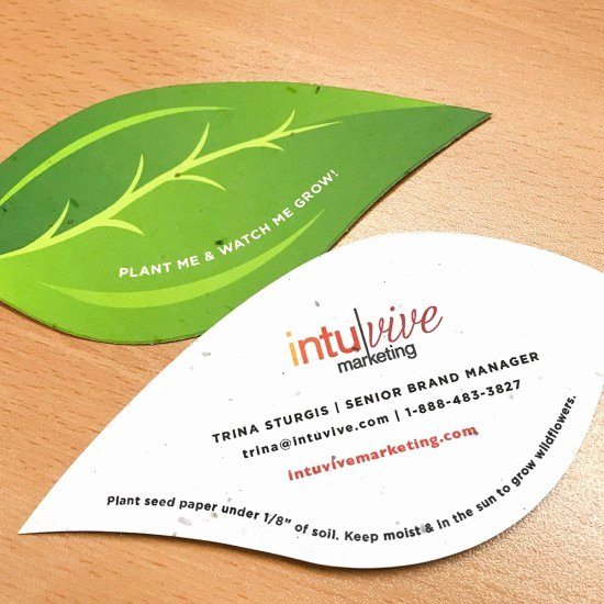 leaf shape seed paper business cards