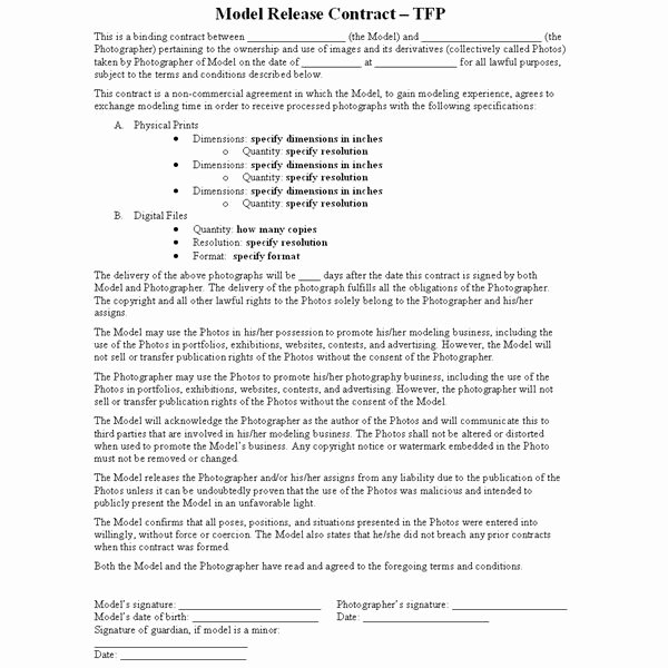 Makeup Artist Contract Template Best Of What is A Tfp or Time for Prints Contract