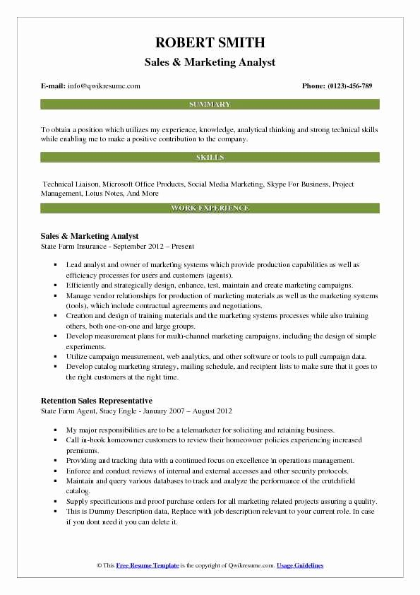 Market Research Analyst Resume Luxury Marketing Analyst Resume Samples