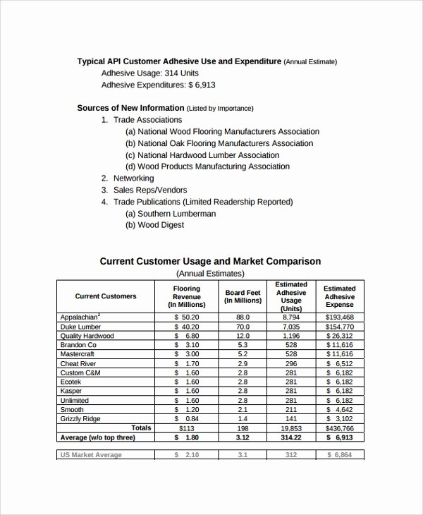 Market Research Report Template Elegant Sample Consulting Report 14 Documents In Pdf Word