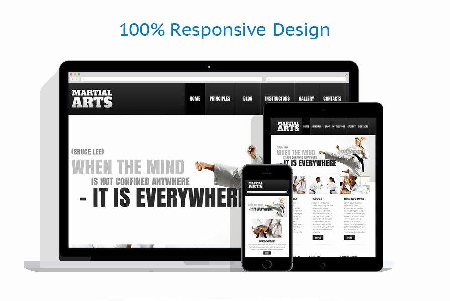 Martial Arts Wordpress theme Elegant Martial Arts Wordpress theme