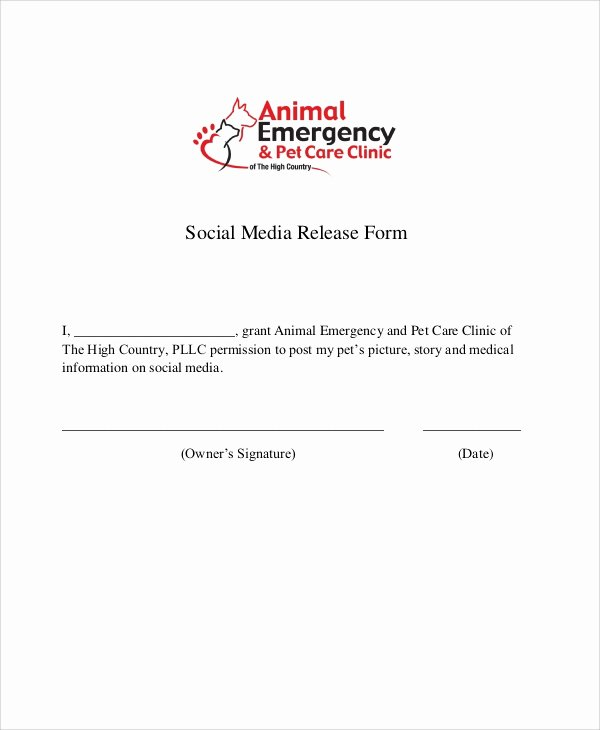 Media Release form Template Elegant 51 Sample Release forms