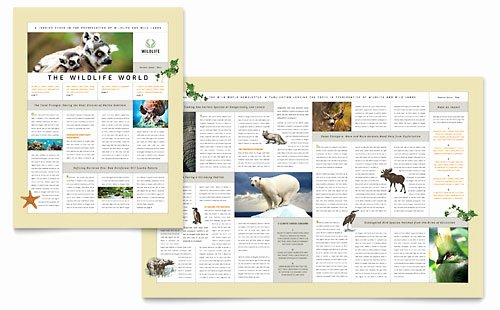 Microsoft Publisher Newspaper Templates Elegant Microsoft Publisher Newspaper Templates Free