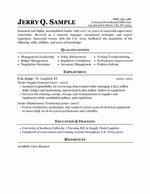 Military Resume Template Microsoft Word New 8 Best Best It Director Resume Templates & Samples Images On Pinterest
