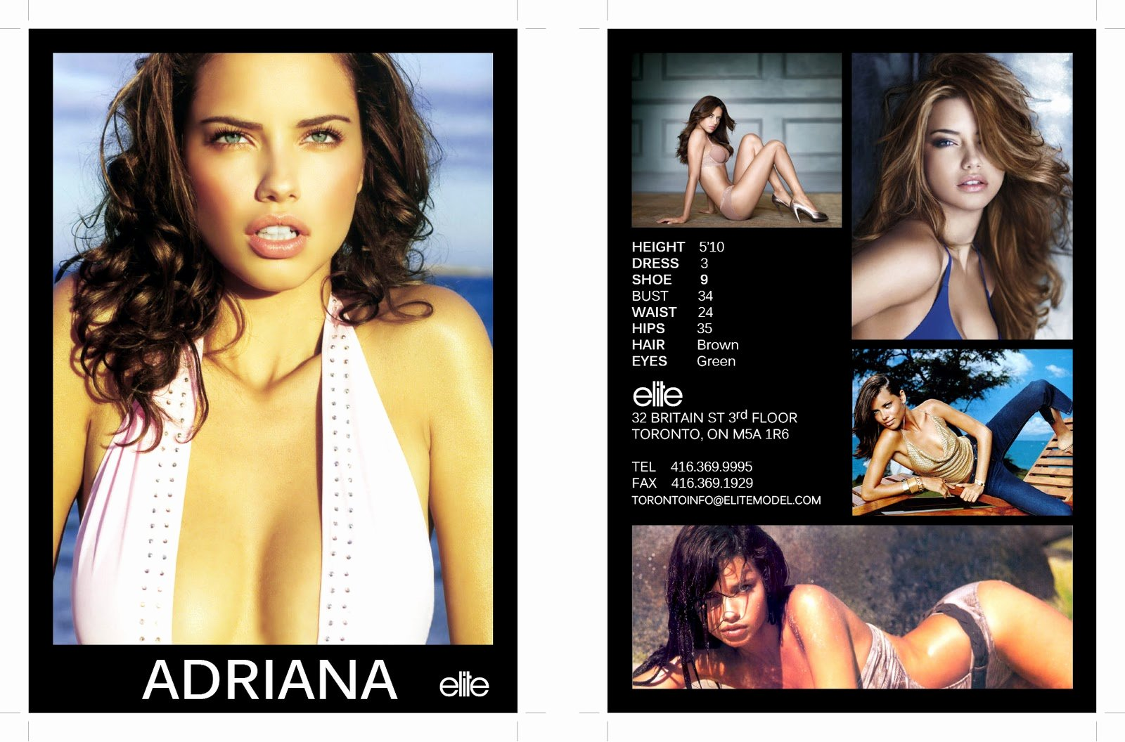 Model Comp Card Template Free Best Of Hit and Miss Fashion Model P Card