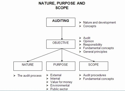 Nature Of Business Example Inspirational the Nature Purpose and Scope Of An Audit and Review