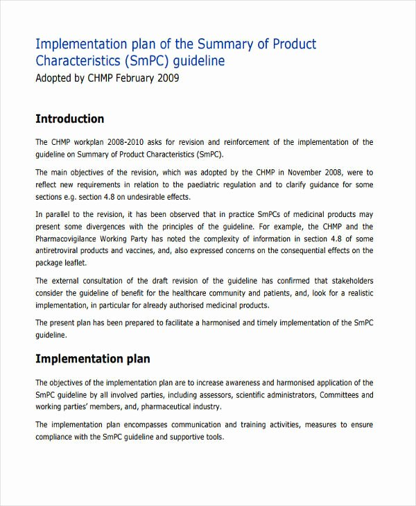 Network Implementation Plan Example Inspirational Free 47 Implementation Plan Examples & Samples In Pdf Doc Google Docs Word Pages
