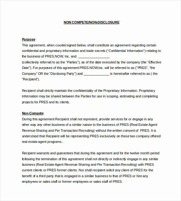 Non Compete Agreement Sample Pdf Luxury Non Pete Agreement Template – What You Need for A Clear