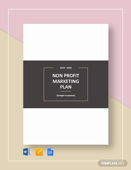 Nonprofit Marketing Plan Template Luxury 10 Revenue Allocation Plan Sample Example format