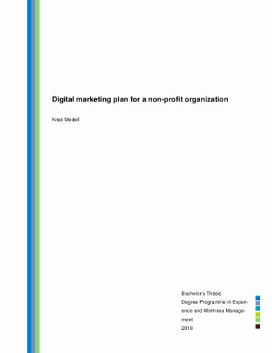 Nonprofit Marketing Plan Template New 13 Nonprofit Marketing Plan Templates Pdf