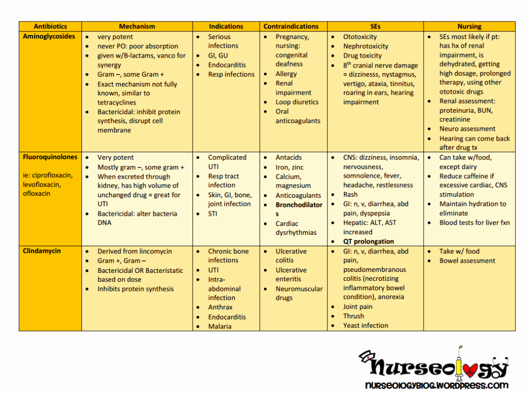 Nursing Drug Card Template Awesome Printable Drug Cards Antibiotics – Nurseology Blog