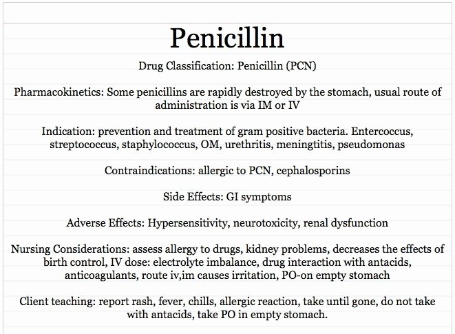 Nursing Drug Card Template New Vocational Nursing Resources Penicillin Card Sample