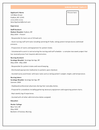 Nursing Student Resume Template Word Fresh Nursing Resume format
