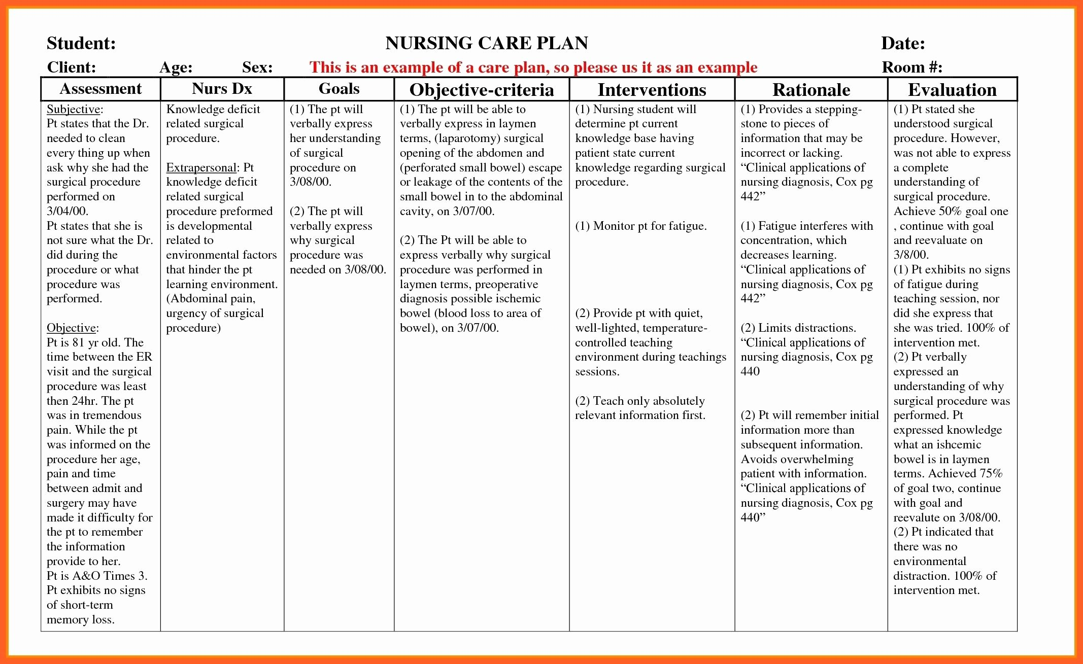 Nursing Teaching Plan Template Fresh Example Care Plan Template for Elderly Nursing Home Delighted Pink Dress