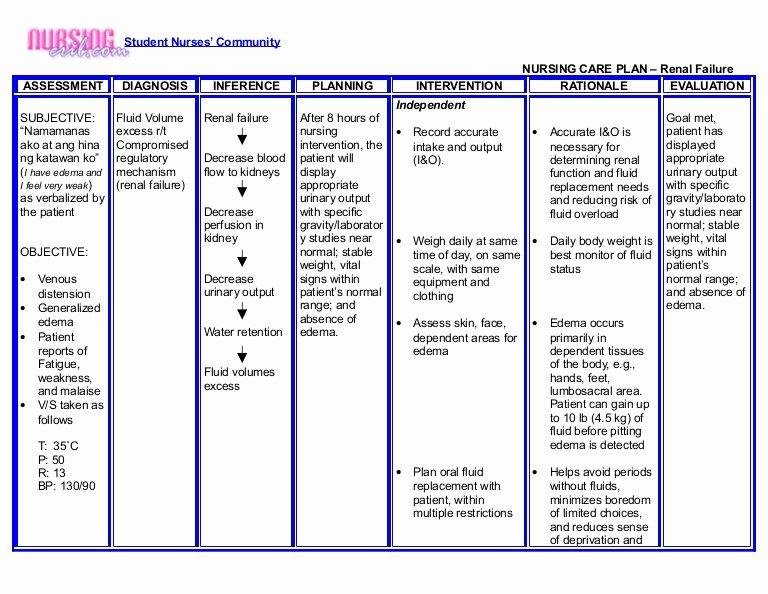 Nursing Teaching Plan Template Luxury Nursing Crib Nursing Care Plan Renal Failure