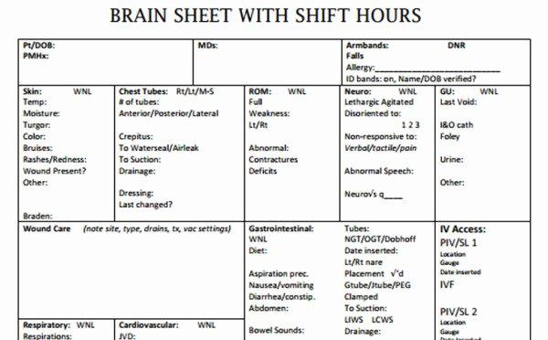 Nursing Time Management Sheet Fresh the 10 Best Nurse Brain Sheets