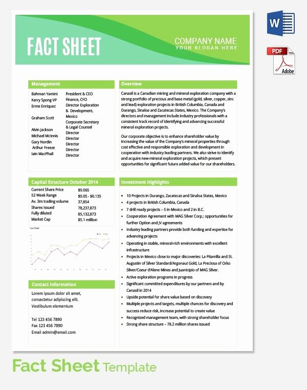One Sheet Template Free Unique Fact Sheet Template Fact Sheet Template 15 Free Word Pdf Documents Download