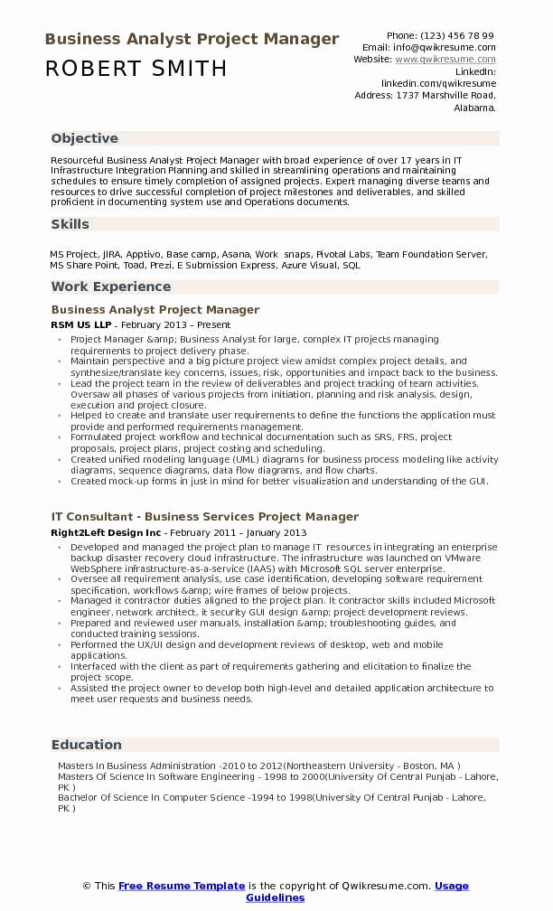 Operations Manager Resume Sample Pdf Beautiful Business Analyst Project Manager Resume Samples