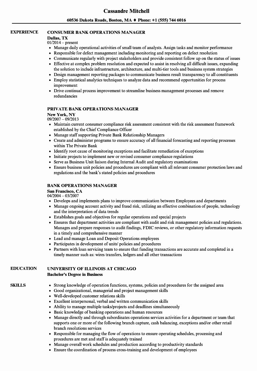 Operations Manager Resume Sample Pdf Lovely 10 Sample Resume for Banking Jobs