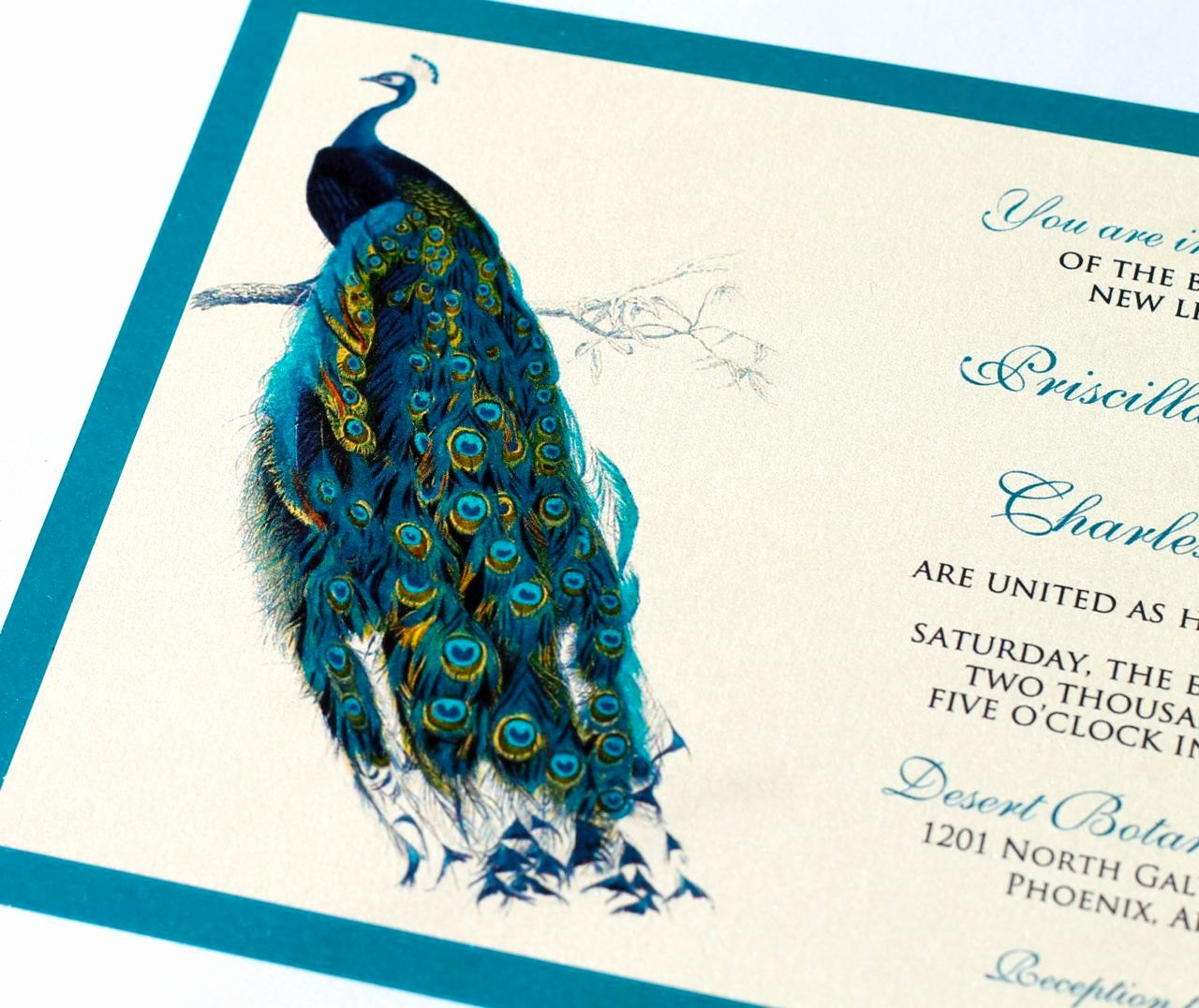 Peacock Invitations Template Free Awesome Priscilla Peacock Wedding Invitation Sample Ivory Ecru