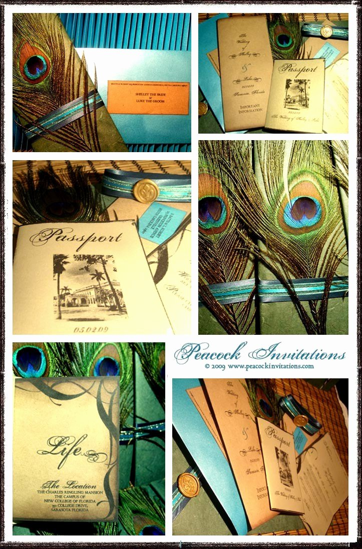 Peacock themed Wedding Invitations New Peacock themed Wedding Invitations
