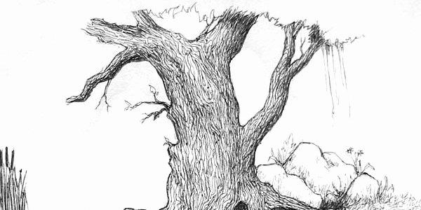 Pencil Sketches Of Nature Beautiful Pencil Drawing Nature