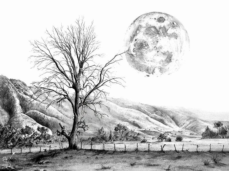Pencil Sketches Of Nature Elegant 19 Nature Drawings
