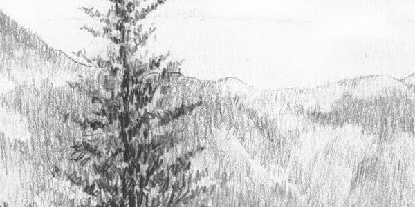 Pencil Sketches Of Nature Inspirational Pencil Drawings 50 Splendid Collections