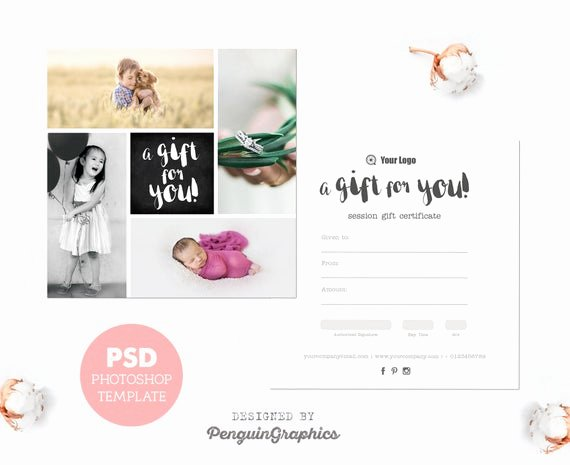 Photo Session Gift Certificate Awesome Gift Certificate Template Graphy Mini Session T Card
