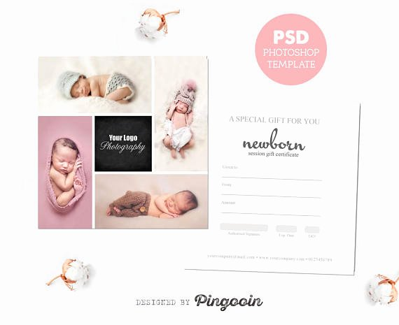Photo Session Gift Certificate Awesome Gift Certificate Template Newborn Session Photography T