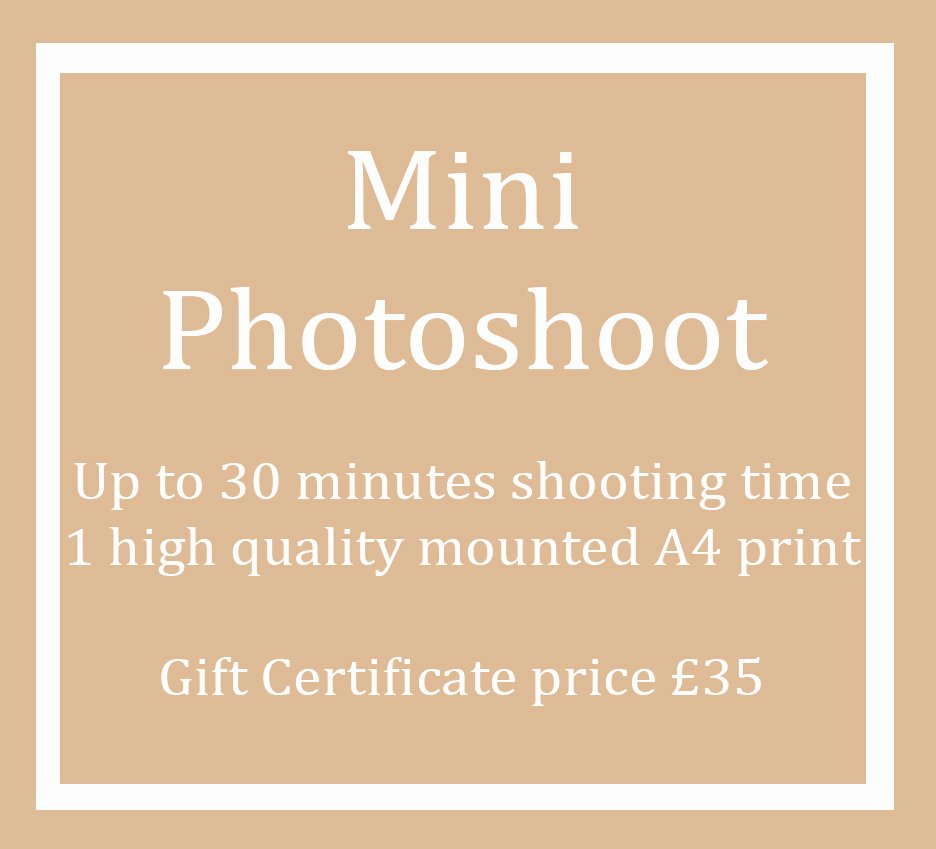 Photo Session Gift Certificate Inspirational Mini Shoot Gift Certificate for 2019 Derya Vicars
