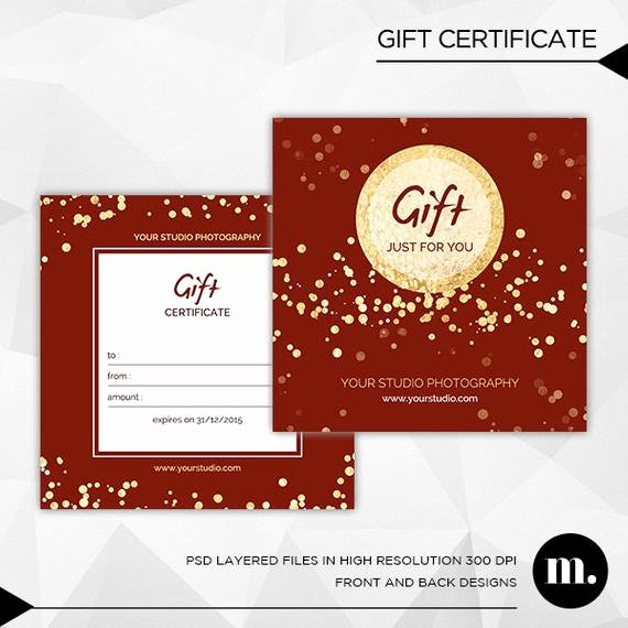 Photography Gift Certificate Template Fresh Graphy Christmas Gift Certificate Template for by Mioradesign