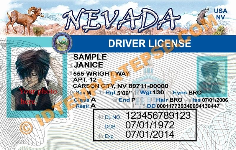 Photoshop Id Card Template Elegant This is Nevada Usa State Drivers License Psd Shop Template This Psd Template You