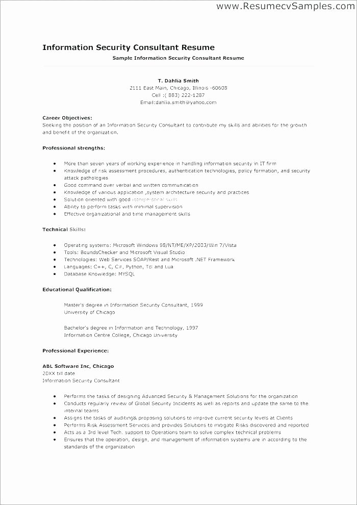 Physical Security Policy Template Awesome Physical Security Risk assessment Template – Elisabethnewton
