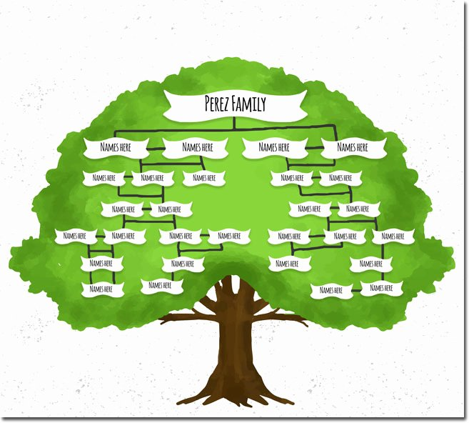 Picture Of A Family Tree Fresh 20 Family Tree Templates & Chart Layouts