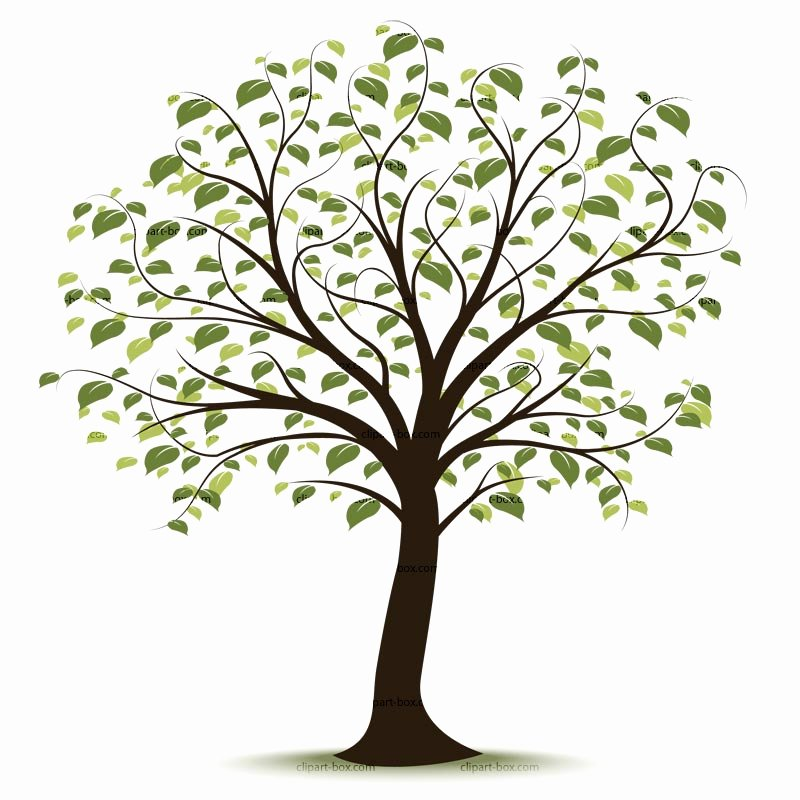 Picture Of A Family Tree Unique Free Family Tree Clipart Clipartix