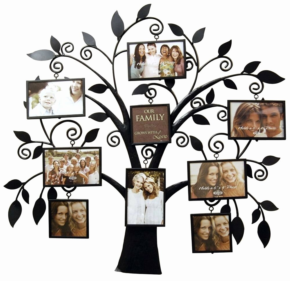 Picture Of A Family Tree Unique Newview Family Tree Metal Collage Black Picture Frame Home Decor Stylish