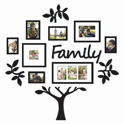 "Picture Of Family Tree Beautiful Family Tree Frame Set 13 Piece Leaf ""family"" Wall"
