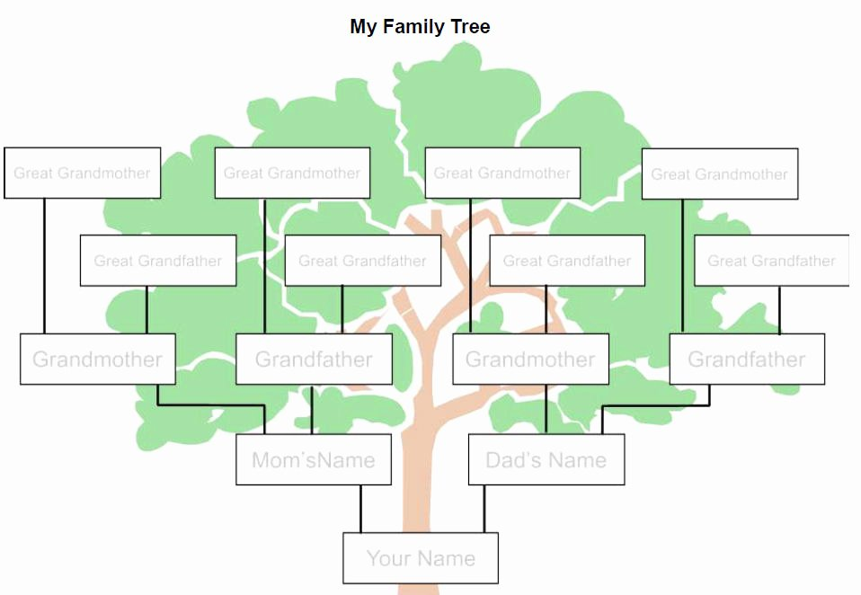 Picture Of Family Tree Lovely Free Tree Template Download Free Clip Art Free Clip Art