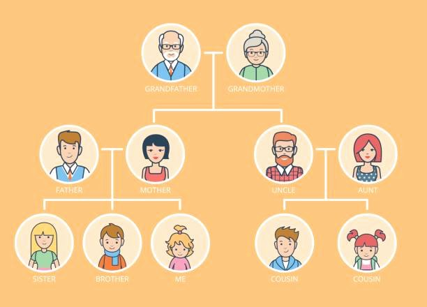 Pictures Of Family Trees Inspirational Best Family Tree Illustrations Royalty Free Vector Graphics & Clip Art istock