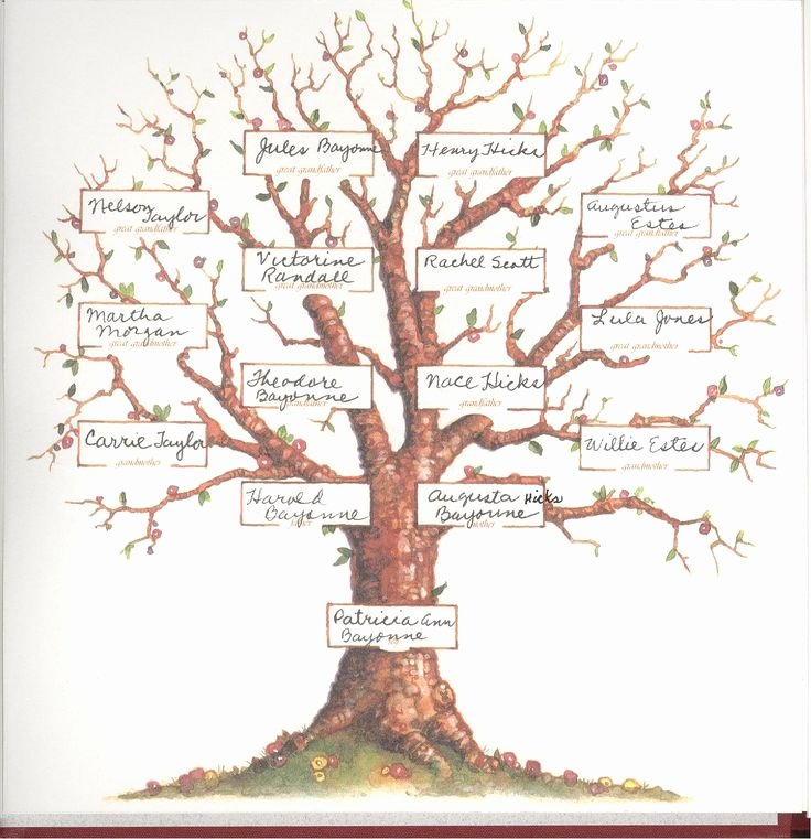 Pictures Of Family Trees Inspirational Blank Family Tree 4 Generations Pat S Family Tree Projects to Try Pinterest