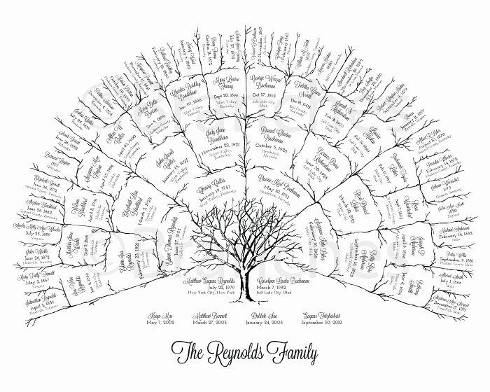 Pictures Of Family Trees Luxury Personalized 5 Generation Ancestral Family Tree Fan Chart