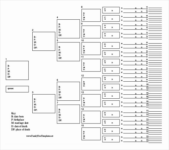 Powerpoint Family Tree Template Best Of Family Tree Template 26 Free Printable Word Excel Pdf